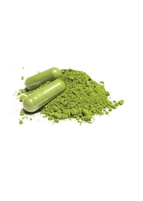 Japanese Matcha Green Tea Capsules 500mg - 60 - Teaologists - 2
