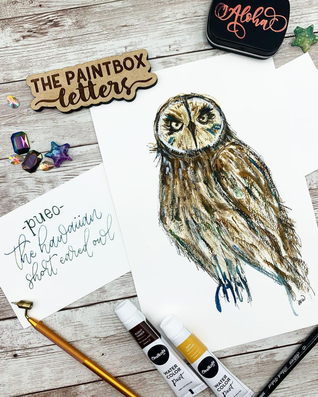 Owl Watercolor Painting 1