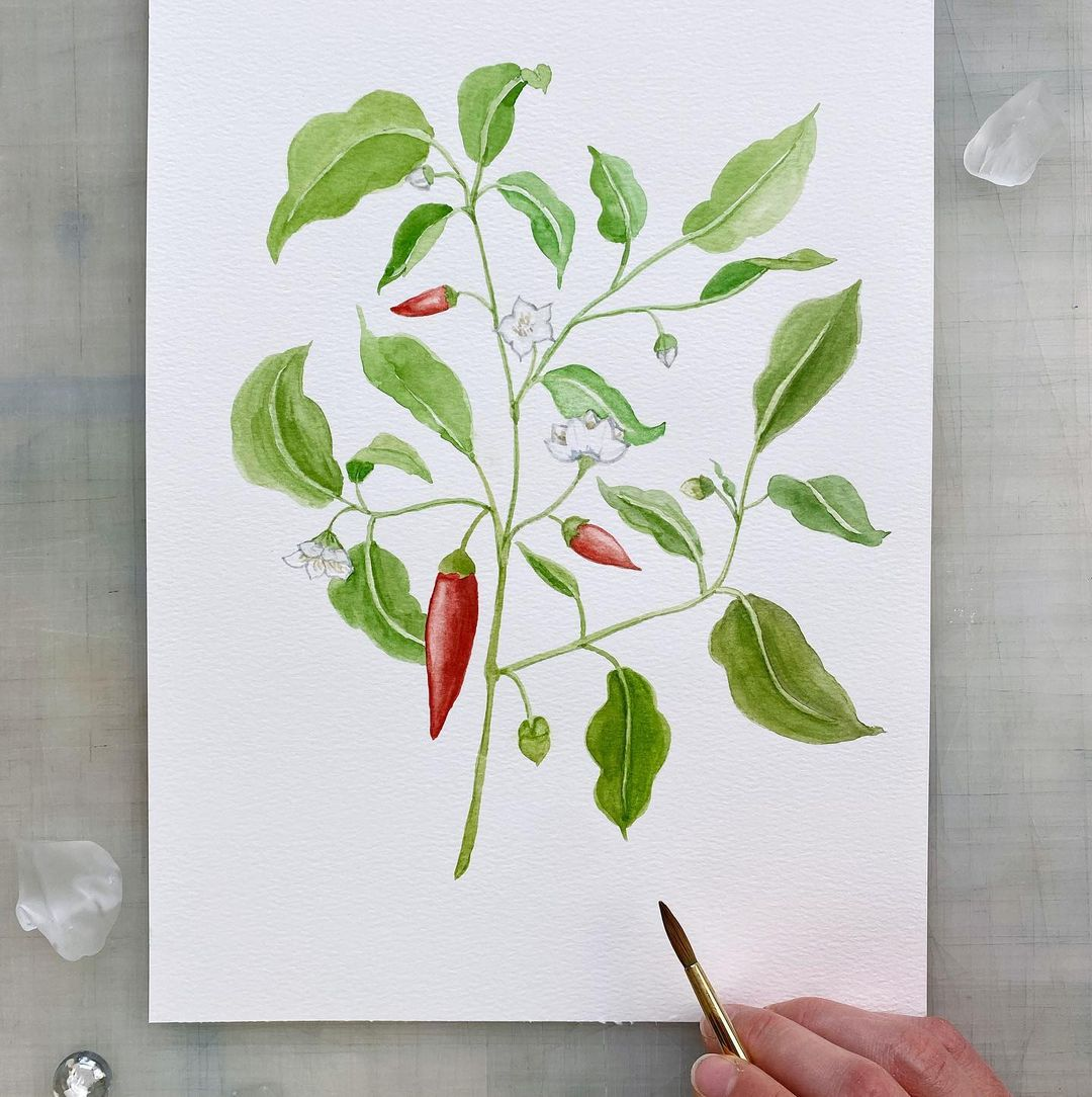 Plant Watercolor Painting 1