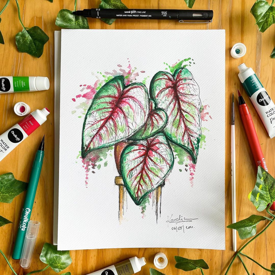 Plant Watercolor Painting 2