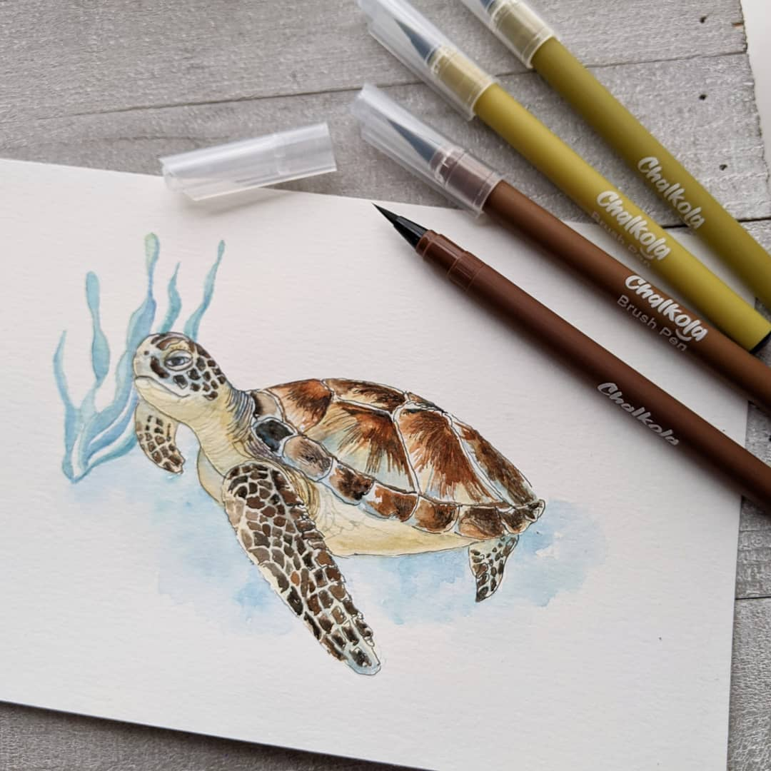 Turtle Watercolor Painting 2