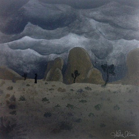 Leslie Sam Kim — Joshua Tree Night Storm