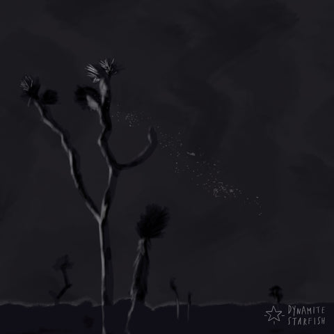 Blackest Night in Joshua Tree