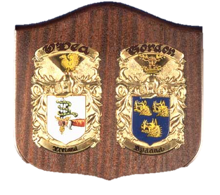 "10.5"" x 11.5"" Hand Painted DBL Cadet Shield Coat of Arms"
