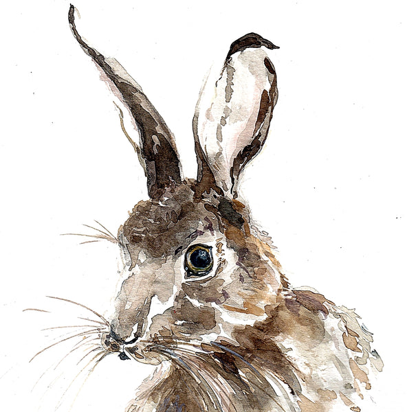 CORAL BARCLAY PRINT HARE