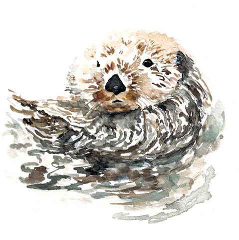 CORAL BARCLAY PRINT OTTER