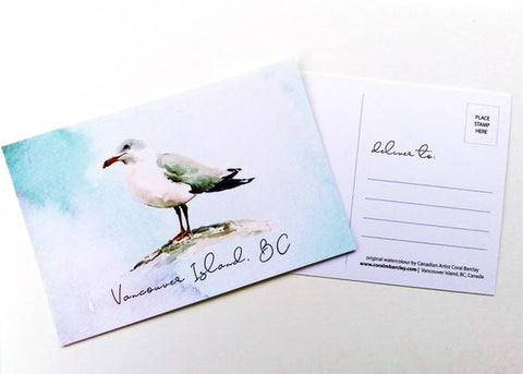 Vancouver Island Postcard  - Seagull