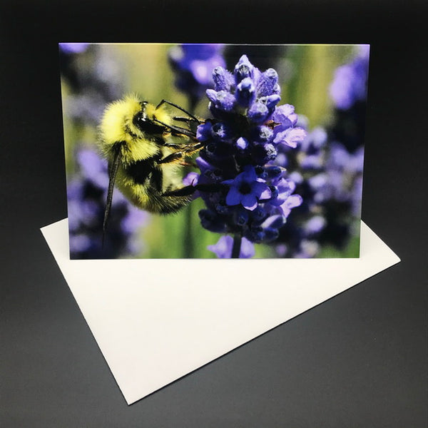 Lavender Bee Greeting Card