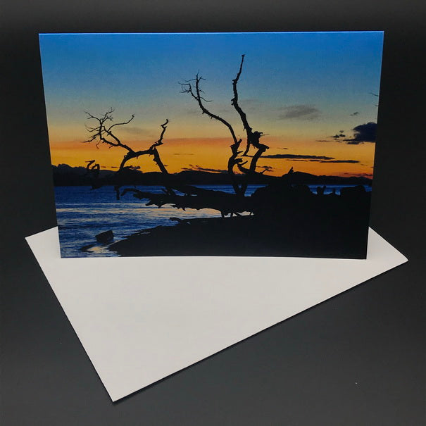 Cabbage Island Sunset ll Greeting Card