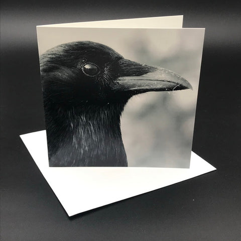 The Black Crow lV Greeting Card