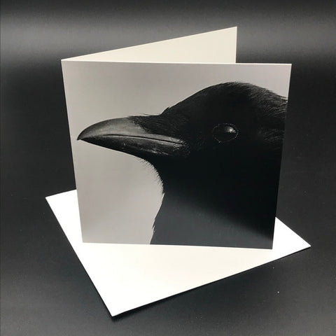 The Black Crow ll Greeting Card