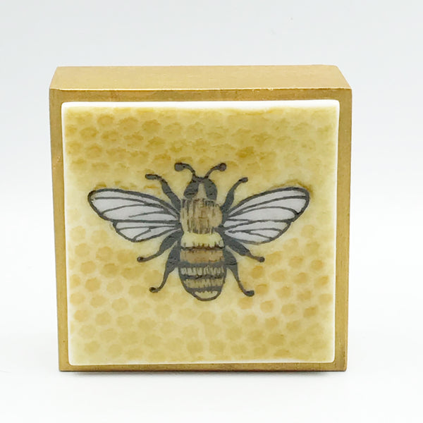 "Fused Glass Art, Bee with Honey Comb, 3"" x 3 """