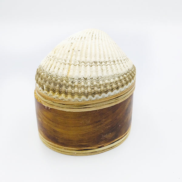 Cockle Shell Wood Box