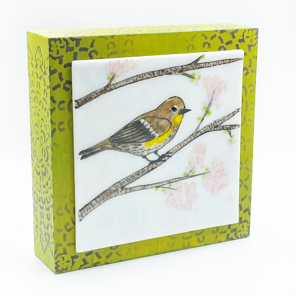"Fused Glass Art, Warbler with Cherry Blossoms, 6"" x 6 """