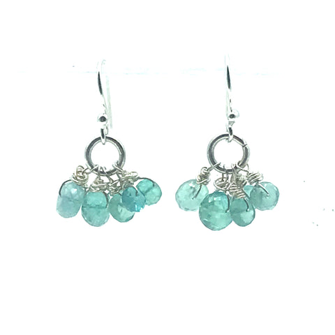 Sterling Silver with Cluster of Fluorite Stones Earrings - Side Street Studio
