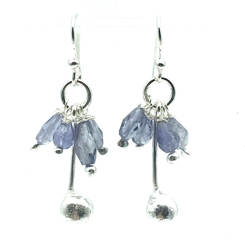 Sterling Silver Palm Drop Earrings with Iolite