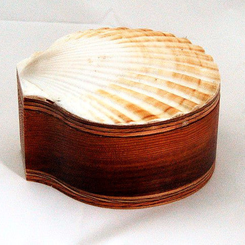 SCALLOP SHELL WOOD BOX - Side Street Studio