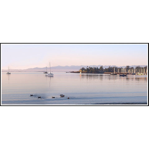 http://cdn.shopify.com/s/files/1/0836/4675/products/SH_Cadboro_Bay_Dawn40_large.jpg?v=1441103137