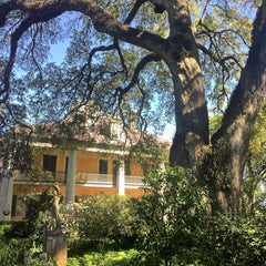 Houmas House Plantation Louisiana