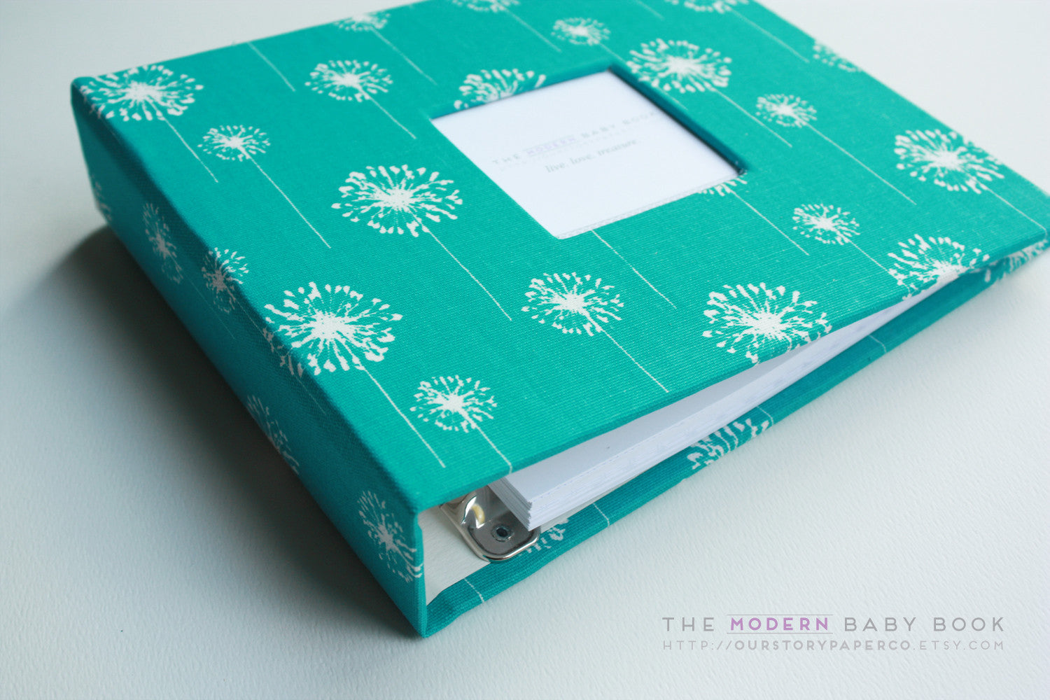 Teal Dandelion Modern Baby Book - Our Story Paper Co.