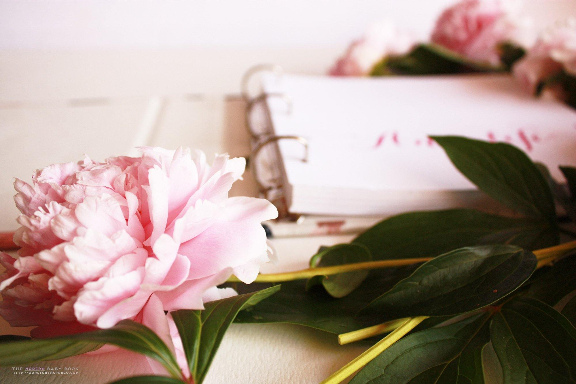 Mint Peonies  Album - Our Story Paper Co.