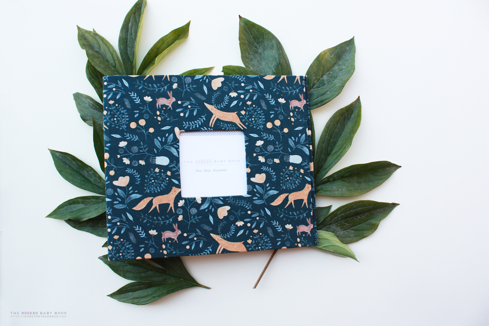 Wild at Heart Modern Baby Book - Our Story Paper Co.