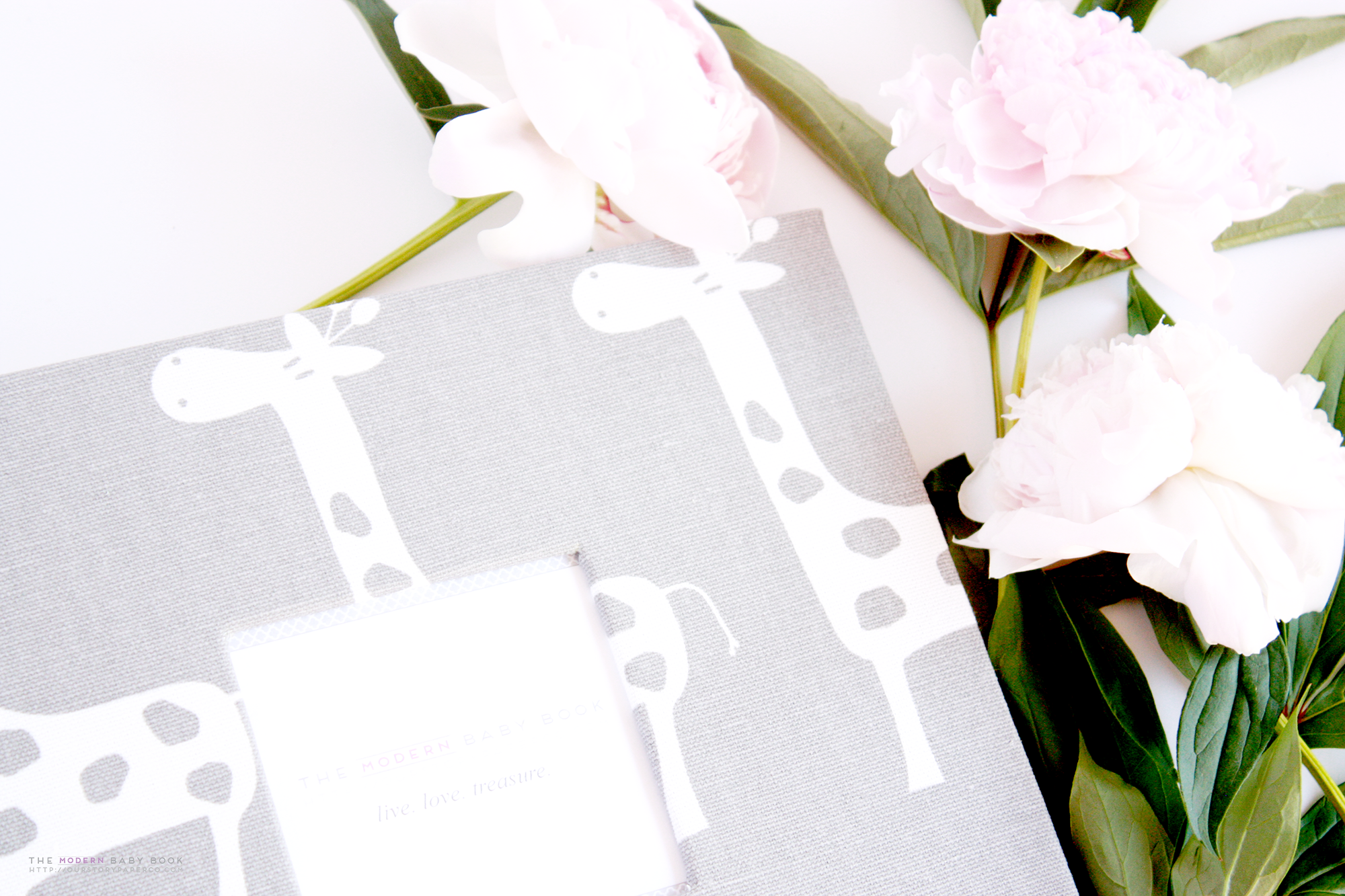 Gray Giraffe Keepsake Album - Our Story Paper Co.