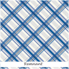 British Invasion Plaid Blue 20 cm remnant