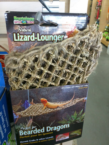 Small Lizard Lounger