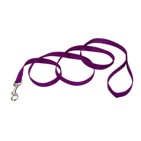 6' Purple Large Leash