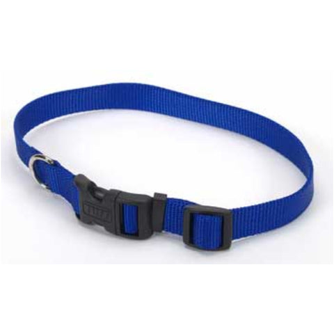 Adjustable Tuff Collar Sm/Med Blue