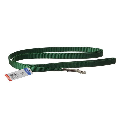 6' Green Small Leash