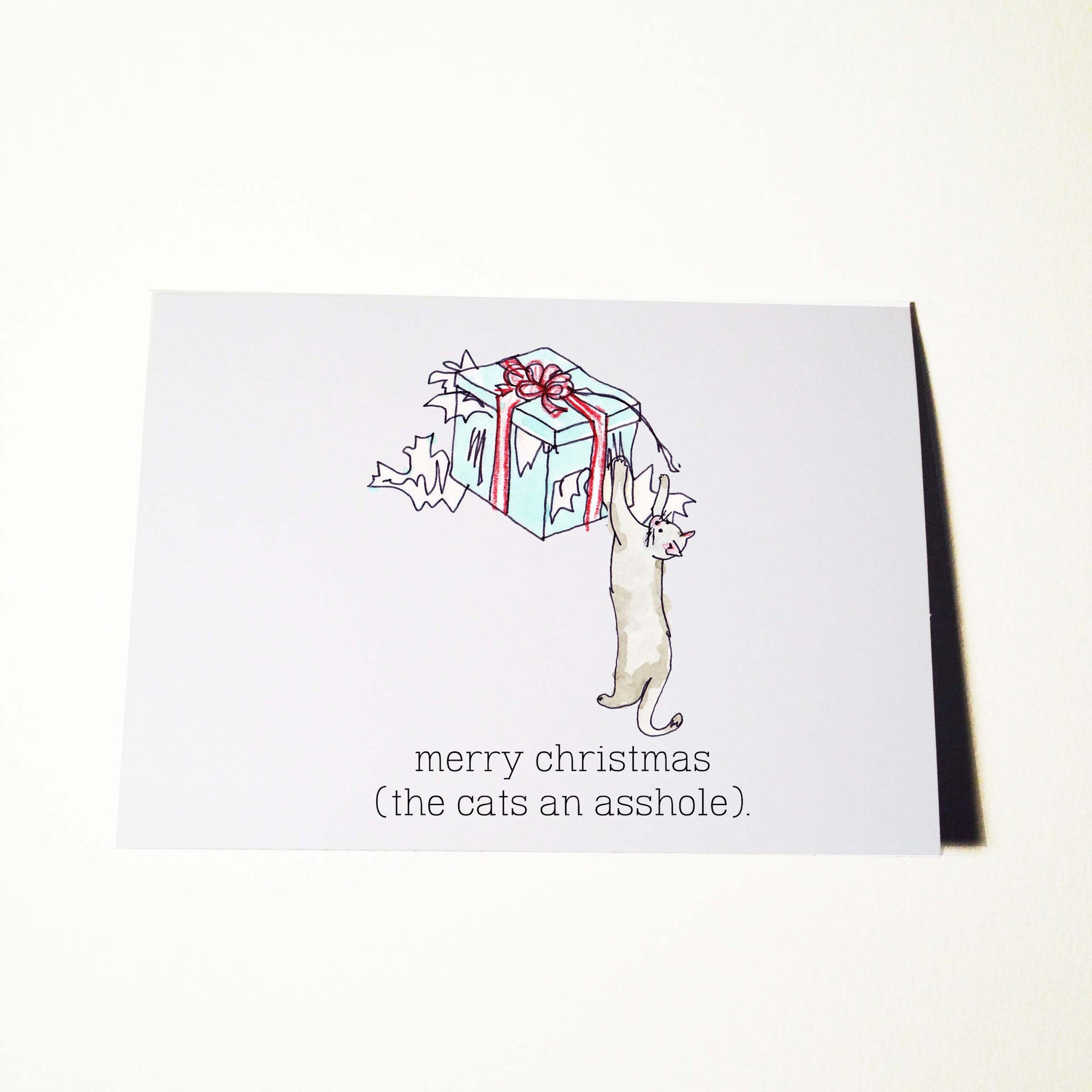 Cats an Asshole Christmas Card