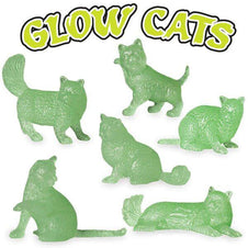 Glow | CATS
