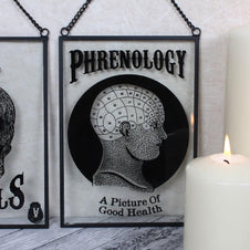 Glass Phrenology | HANGING SIGN