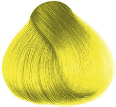Lemon Daisy Hair Colour