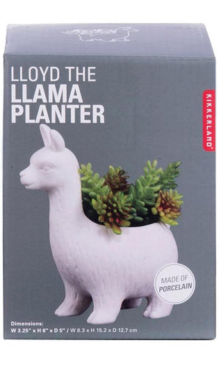 Lloyd The Llama | PLANTER