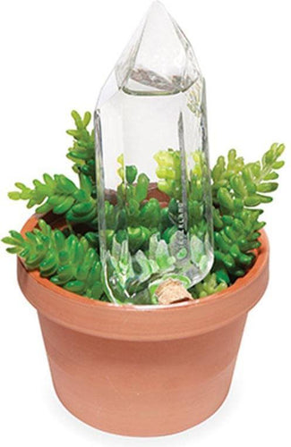 Water From a Crystal Glass | PLANT FEEDER