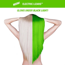 Electric Lizard | CLASSIC COLOUR