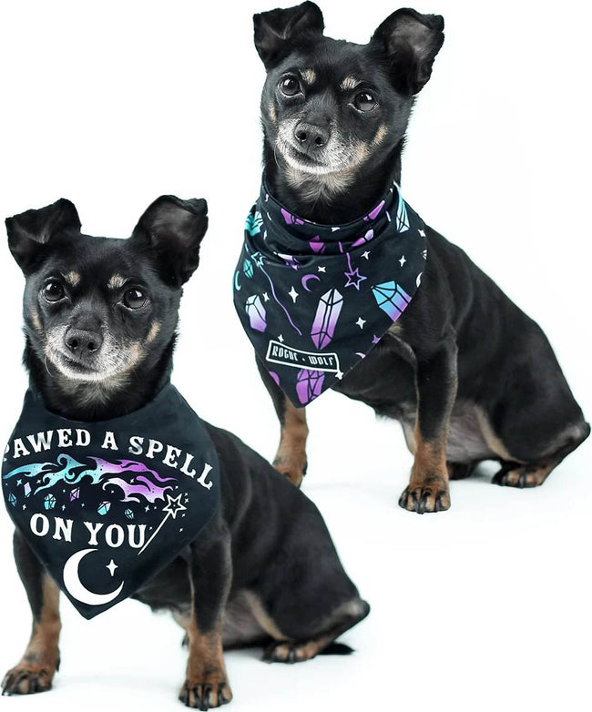 I Pawed A Spell On You | PET BANDANA