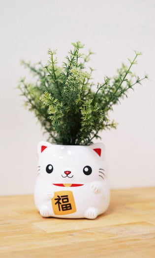 Lucky Niko Cat | PLANTER