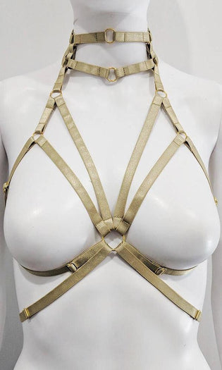 Jett Gold | HARNESS