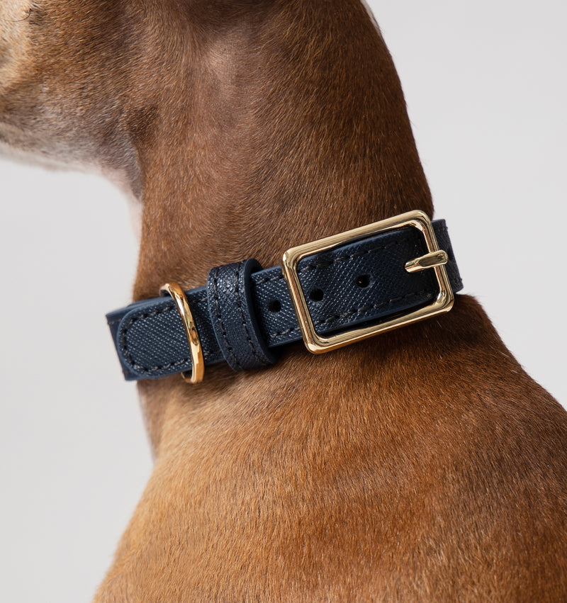 Classic Royal Navy Leather Collar