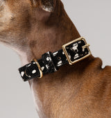 Classic Polka Dot Leather Collar
