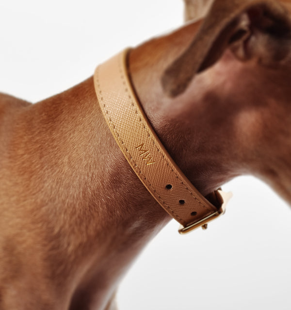 Classic Sand Leather Collar