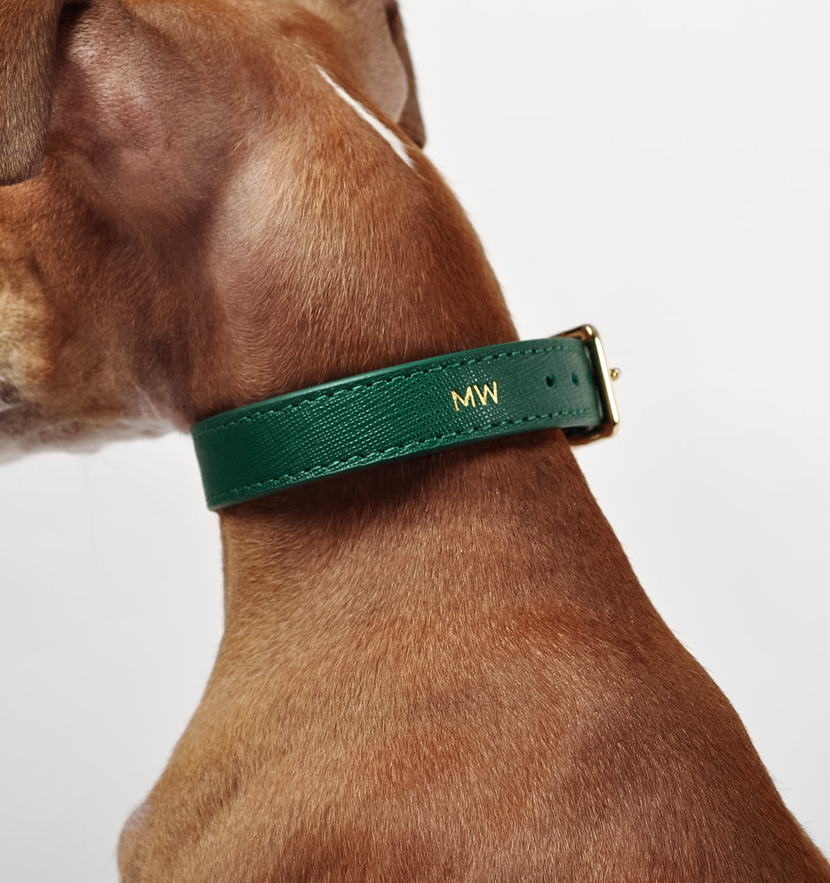 Classic Royal Green Leather Collar
