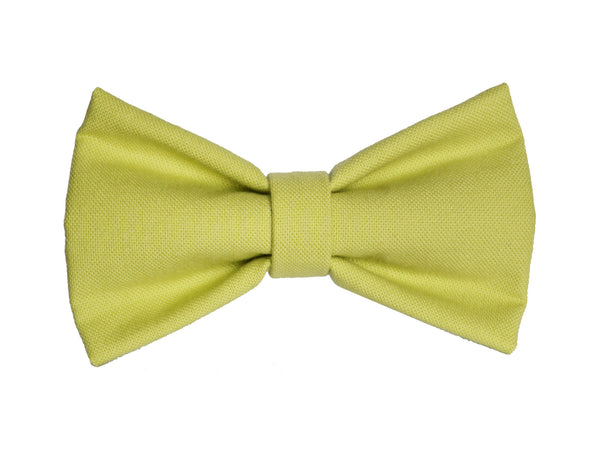 Sprout Bowtie