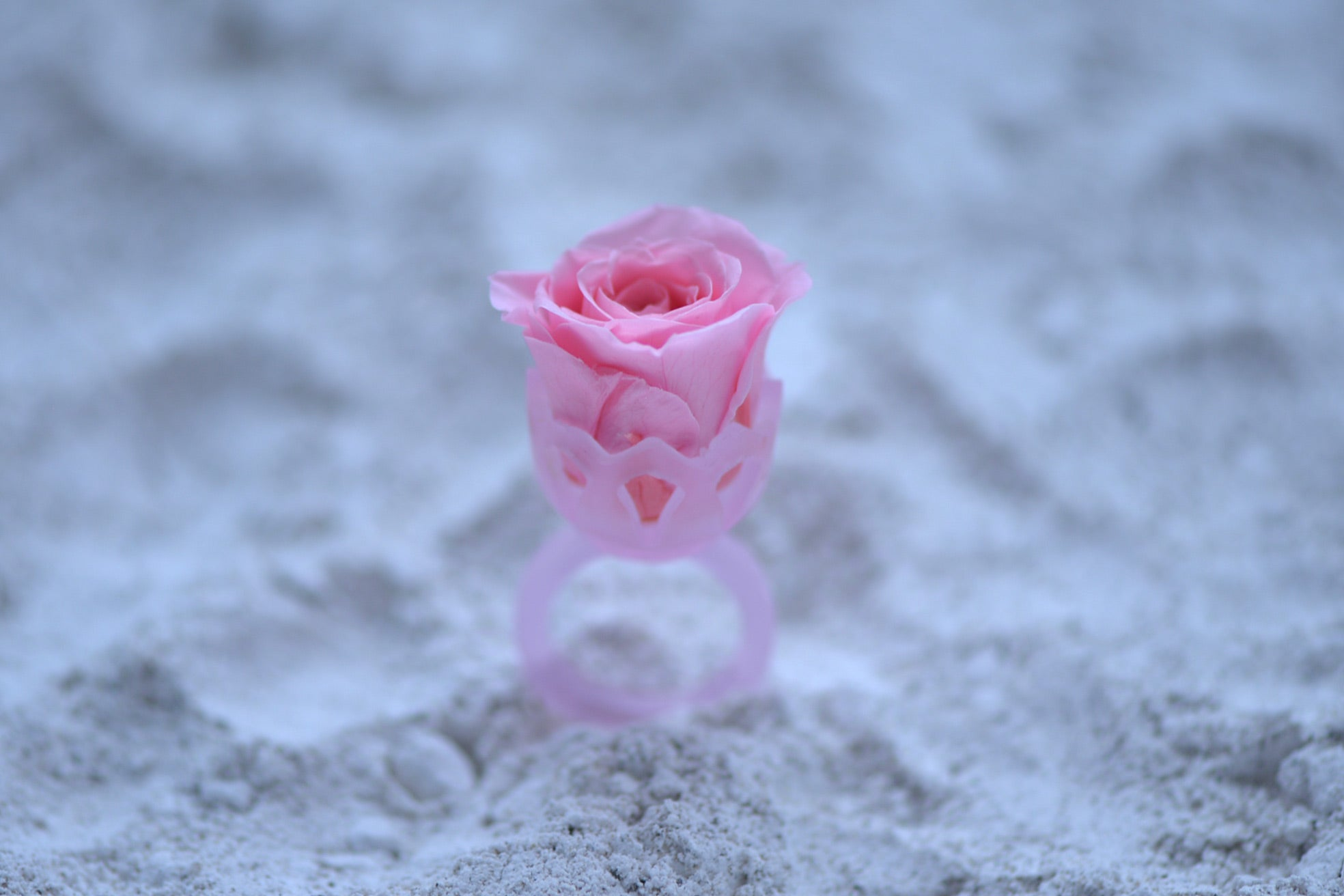 Kiln Casting Ring with a Stabilized Rose