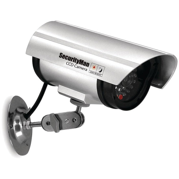 simulated home security camera
