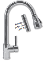 Water Inc. WI-FAOZONE1 Ozone One Faucet